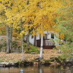 cottage11-12